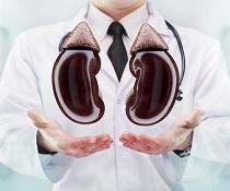 Jak ozdravit své ledviny? Mysleme na to, co jíme a děláme!