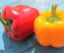 Papriky – jedna z nejhodnotnějších druhů zeleniny
